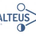 Balteus